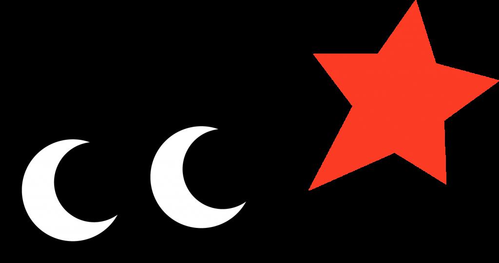 11_すごはんロゴ2